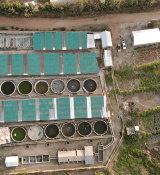 Kamuthanga tilapia-based fish farm in Machakos, Kenya